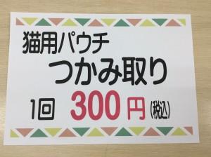 IMG_3960[1]