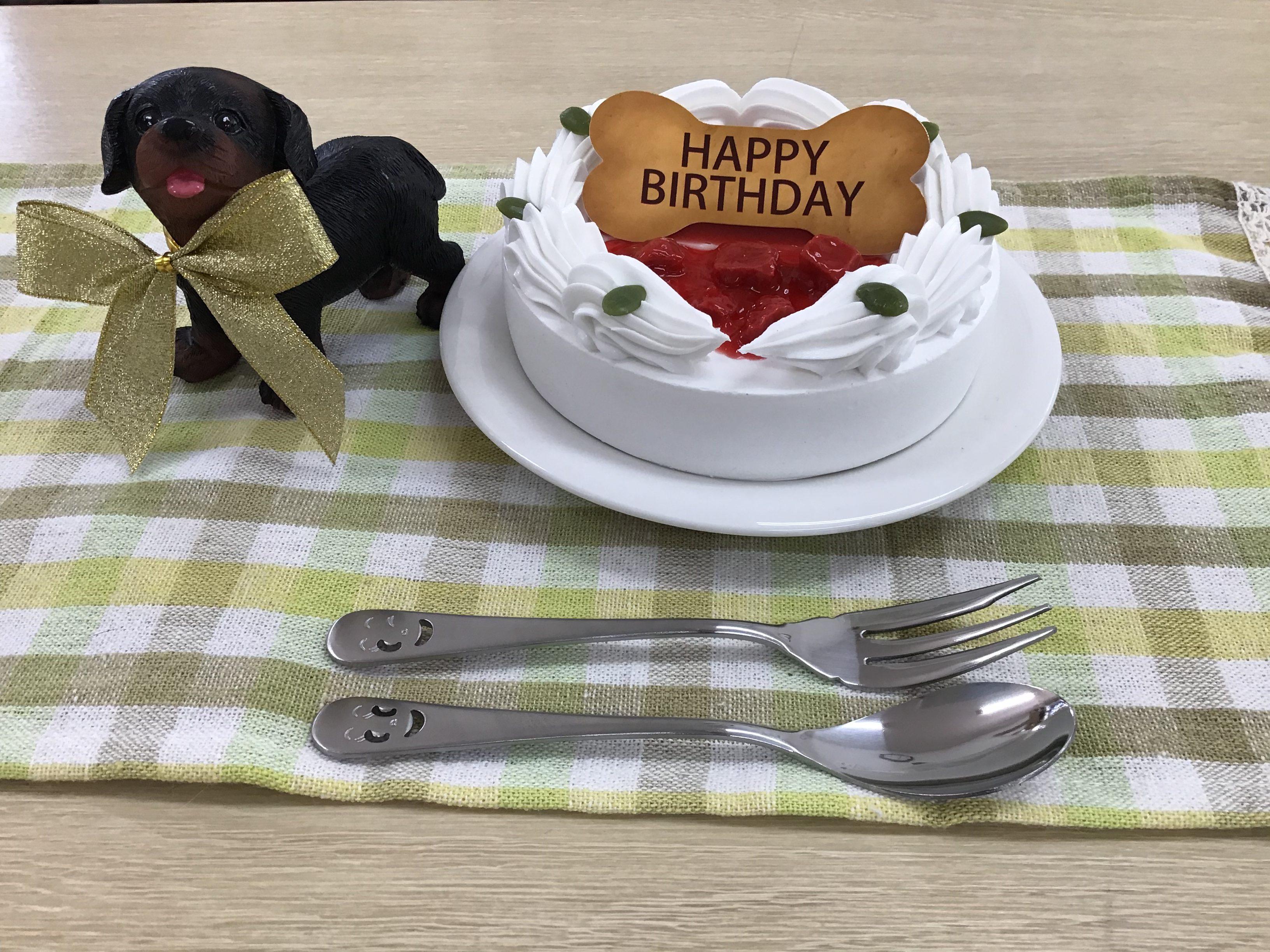 かわいいケーキをペットと一緒に♪